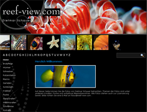 Webdesign Aachen: reef-view